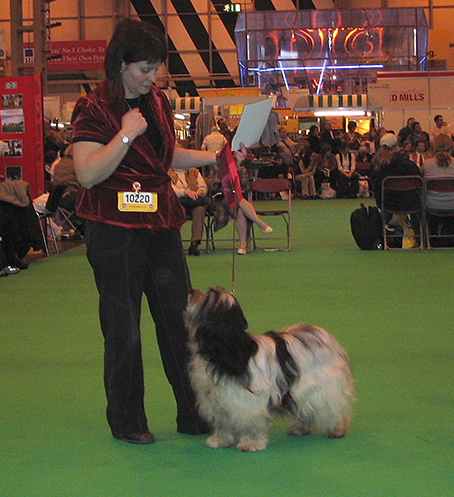 Anja winning open bitch class at Crufts in 2007